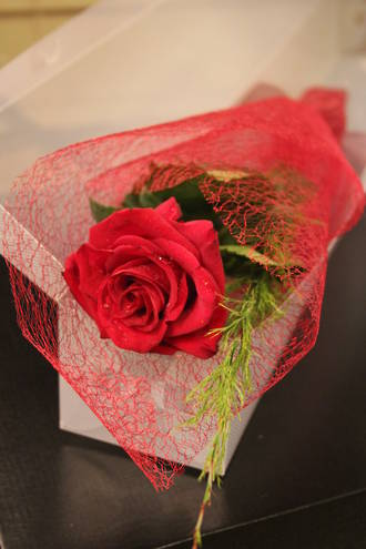 Boxed Red Rose