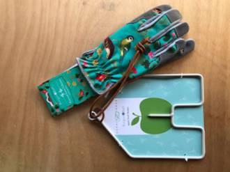 Green Gloves & Bird feeder